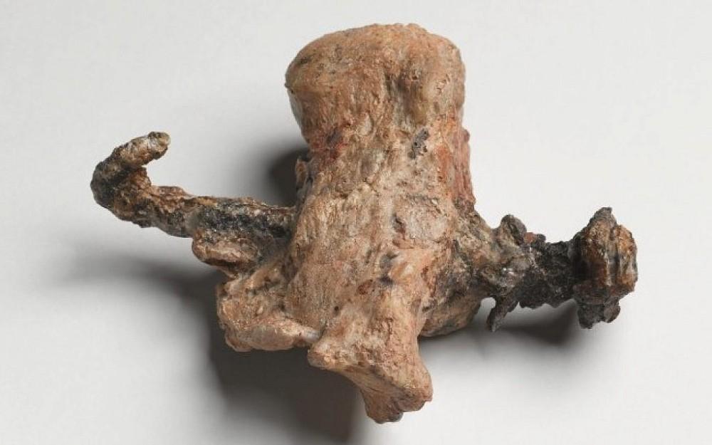 heelbone